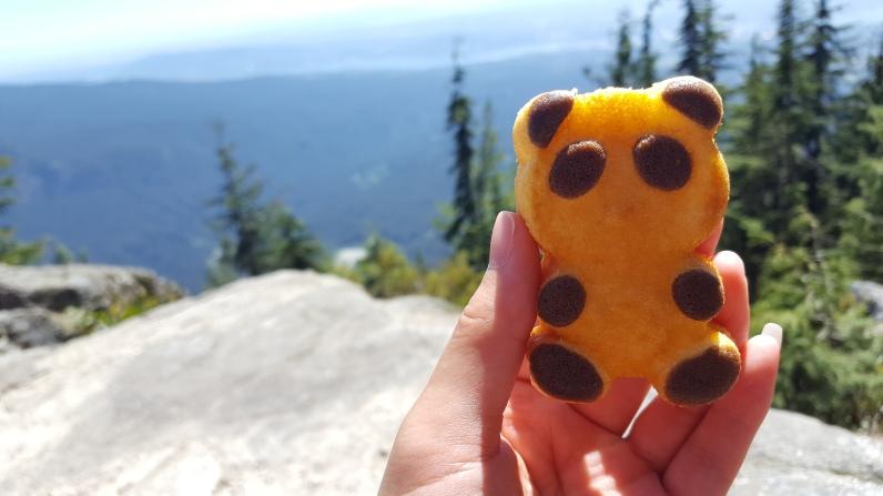 panda soft cookie